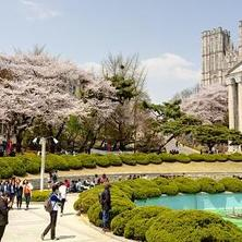 Applying to a South Korean university